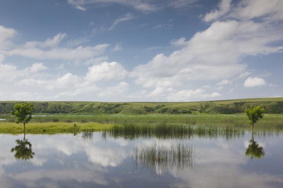 Romania, Danube River Delta, Baltenii de Sus, Danube River Reflection-Walter Bibikow-Photographic Print