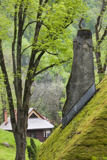 Romania, Transylvania, Bran, Bran Castle, Grass Covered Farm Buildings-Walter Bibikow-Photographic Print
