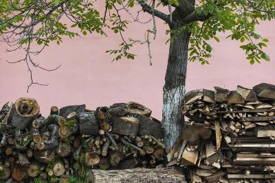 Romania, Transylvania, Sibiel, Firewood-Walter Bibikow-Photographic Print