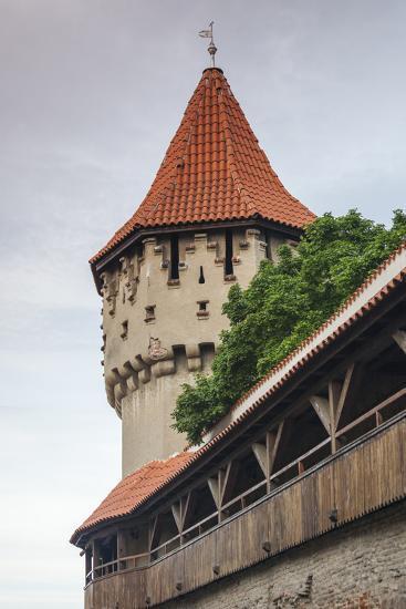 Romania, Transylvania, Sibiu, Carpenters Tower,Defensive Bastion-Walter Bibikow-Photographic Print
