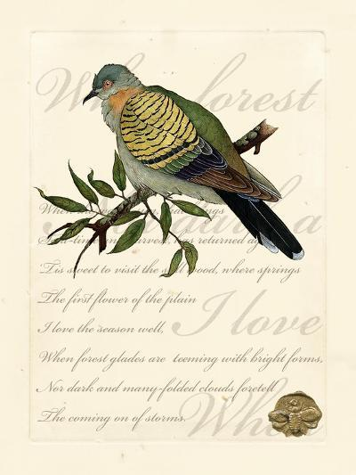 Romantic Dove I-Vision Studio-Art Print