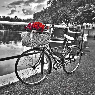 Romantic Roses I-Assaf Frank-Art Print