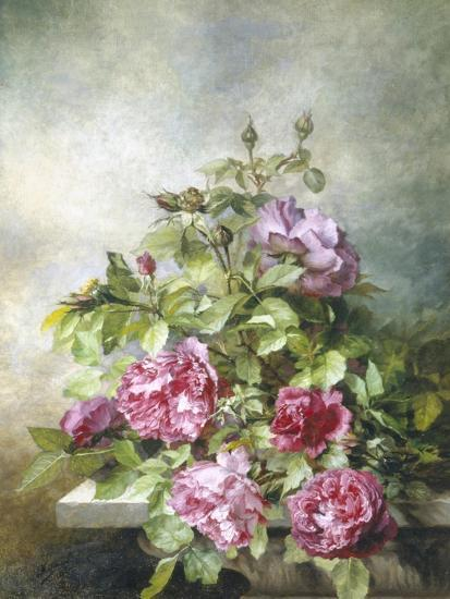 Romantic Roses-Claude Massman-Giclee Print