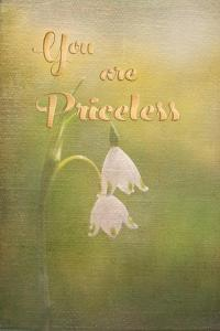 Priceless by Romona Murdock