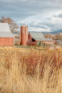 Red Silo Barn by Romona Murdock
