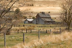 Roadside Barn by Romona Murdock