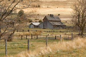 Roadside Barn by Romona Murdock