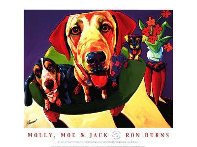 Molly, Moe and Jack