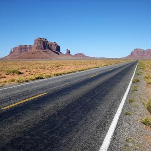 Desert Road by Ron Chapple