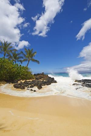 Makena Cove, also known as Secret Beach and Wedding Beach, Maui, Hawaii