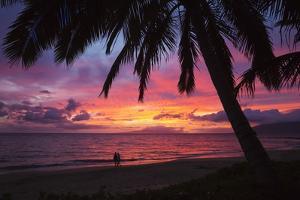 Palm Trees at Sunset on Keawekapu Beach, Wailea, Maui, Hawaii by Ron Dahlquist
