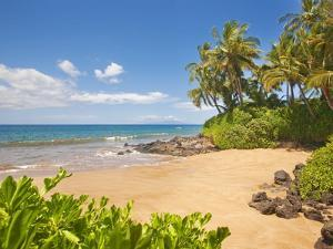 Secluded sandy beach on Maui by Ron Dahlquist