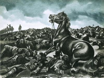 Comanche, the Lone Survivor of Custer's Last Stand