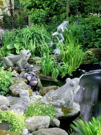 Stone Frog Fountains, Cobbles and Rocks Around Pond