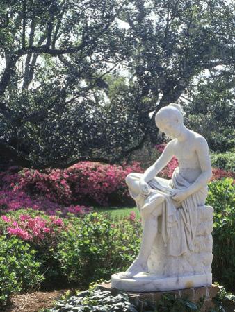Middleton Gardens, Charleston, SC
