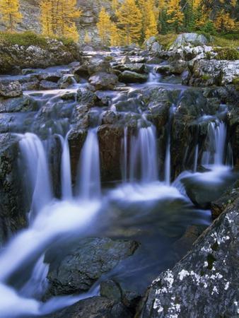 Lake O'Hara, Opabin Plateau, Cascade Lakes, Yoho National Park, British Columbia, Canada.