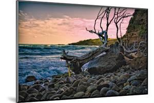 Caribbean, Grenada, Lasagesse Beach by Rona Schwarz