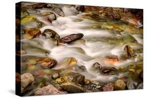Colorful Rocks in a Rushing Mountain Stream. Glacier NP, Montana by Rona Schwarz