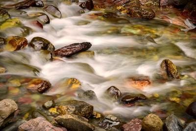Colorful Rocks in a Rushing Mountain Stream. Glacier NP, Montana