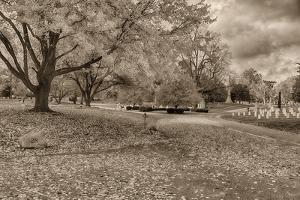Crown Hill Cemetery, Indianapolis, Indiana by Rona Schwarz