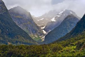 New Zealand, South Island, Fiordland National Park, Milford Sound by Rona Schwarz