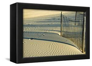 North Carolina. Dune Fence, Light, Shadow and Ripples in the Sand by Rona Schwarz
