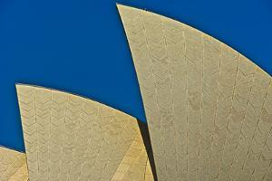 The Opera House, Sydney, Australia by Rona Schwarz