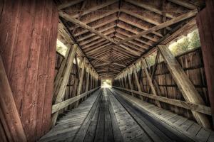 USA, Indiana, Carroll County. Lancaster Covered Bridge by Rona Schwarz