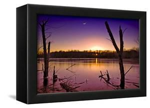 USA, Indiana, the Celery Bog Wetlands in Winter at Sunset by Rona Schwarz