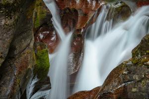 USA, Montana, Glacier National Park. Avalanche Creek Falls by Rona Schwarz