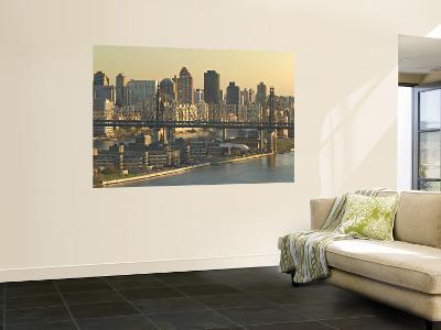 Roosevelt Island and Queensboro Bridge, New York, USA-Walter Bibikow-Wall Mural