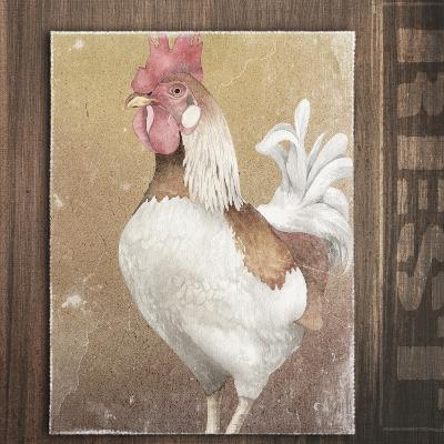 Rooster II-Kory Fluckiger-Giclee Print