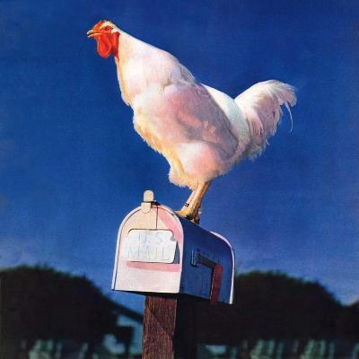 """Rooster on Mailbox,""May 1, 1941--Giclee Print"