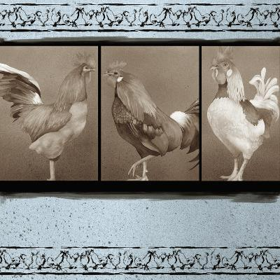 Rooster Ware Aqua I-Kory Fluckiger-Giclee Print