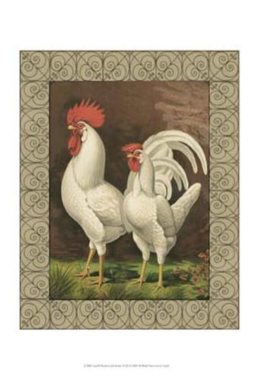 Roosters VI-Cassell's Poultry Book-Art Print