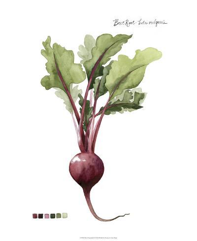 Root Vegetable II-Grace Popp-Giclee Print