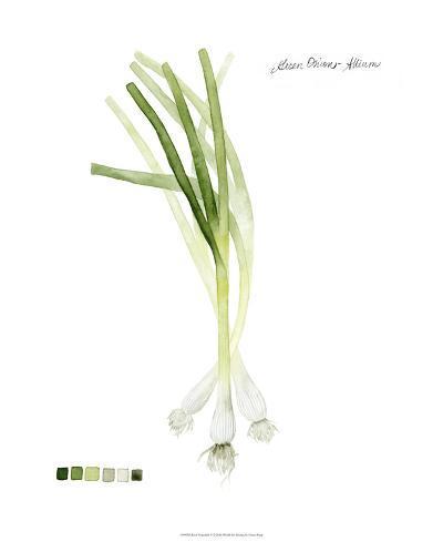 Root Vegetable V-Grace Popp-Giclee Print