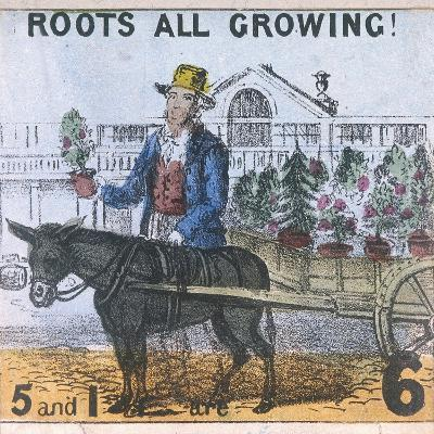 Roots All Growing!, Cries of London, C1840-TH Jones-Giclee Print