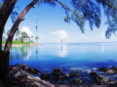 Rope Swing over Water Florida Keys Florida, USA--Photographic Print