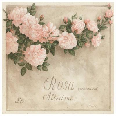 https://imgc.artprintimages.com/img/print/rosa-albertine_u-l-f493h00.jpg?p=0