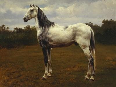 A Grey Camarguen Stallion in a Clearing by Rosa Bonheur