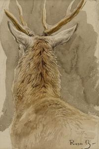 Etude de cerf by Rosa Bonheur
