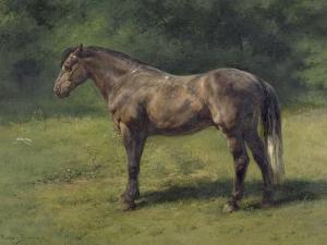 Etude de cheval gris au vert by Rosa Bonheur