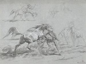 Etude de chevaux by Rosa Bonheur