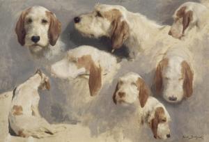 Etude de chien de chasse ; 8 esquisses by Rosa Bonheur