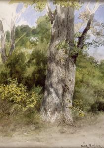 Le Gros chêne by Rosa Bonheur