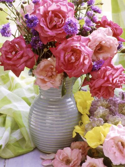 Rosa (Mixed) & Centaurea in Blue Jug-Lynne Brotchie-Photographic Print