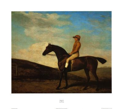 Rosaletta-George Stubbs-Art Print