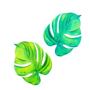 Monestera Leaves in Watercolor by rosapompelmo