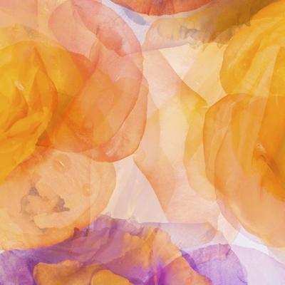https://imgc.artprintimages.com/img/print/rosas-compo-5_u-l-pynoyf0.jpg?p=0